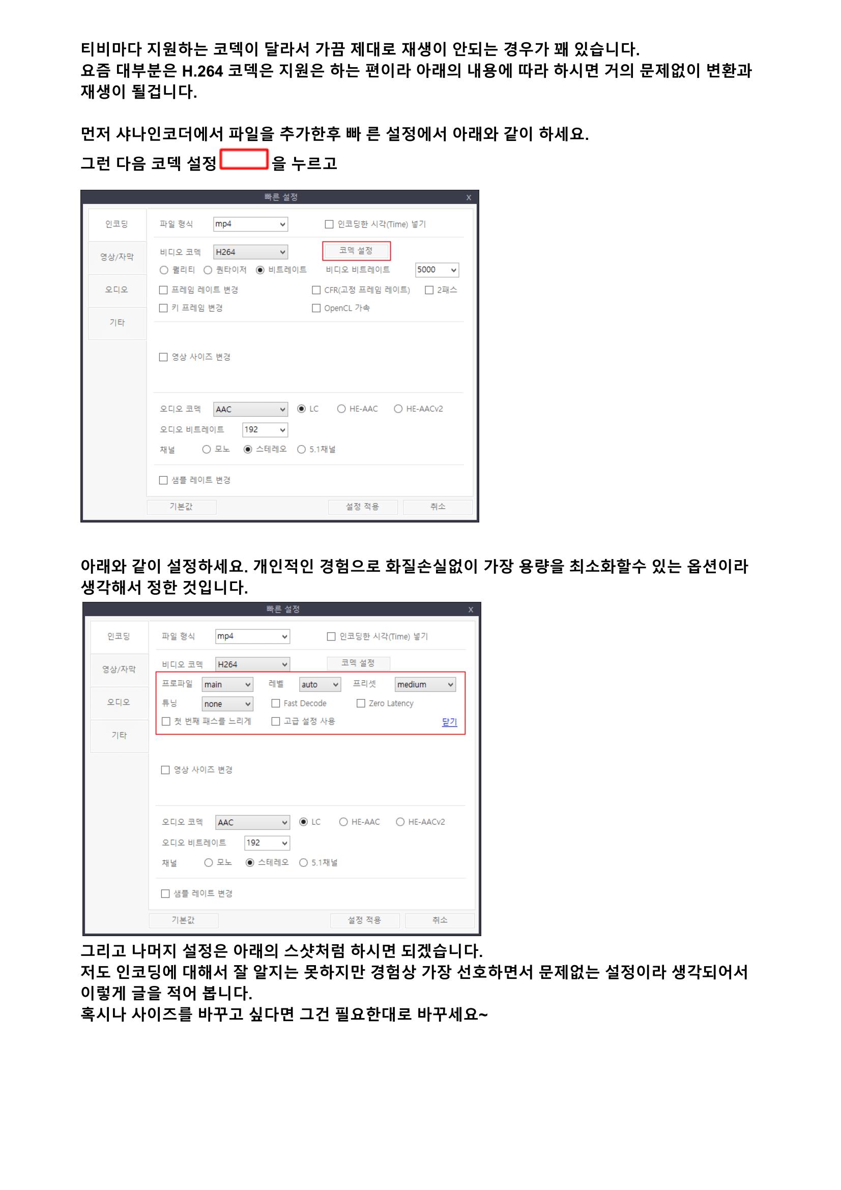 코덱설정 - Google 문서-1.png